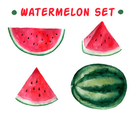 Vector watercolor hand drawn watermelon set.