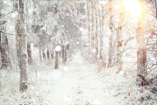 Snowy winter road in a field