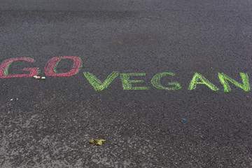 Go vegan! Healthy concept.