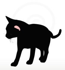 cat silhouette in Rubbing Scent  pose