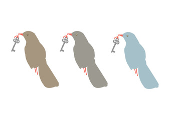 Bird with Key