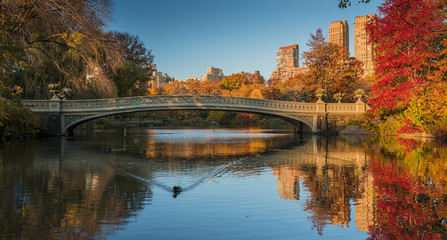 Fall colors in Central Park, New York City