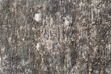 Vintage wood texture. Abstract background