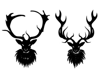 Mysterious Stag