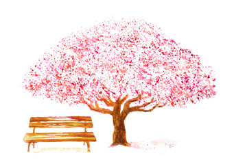 watercolor hand drawn cherry tree and bench on white