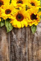Fototapete - Sunflowers on wooden background