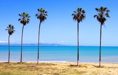 Tunisia, the beach near Carthage