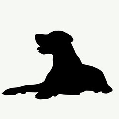 Dog silhouette on white background