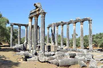 Temple of Zeus, Euromos