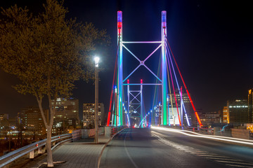 Nelson Mandela Bridge - Johannesburg, South Africa