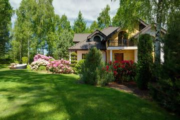Beauty green lawn