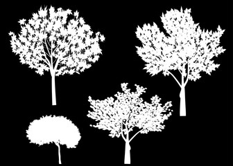 four isolated trees white silhouettes