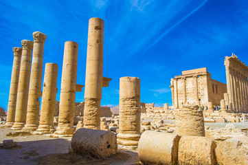 Columns in Palmyra, Syria. UNESCO World Heritage Site