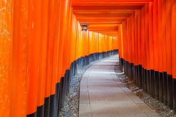 Thousands of vermilion torii gates at Kyoto Fushimi Inari Shrine