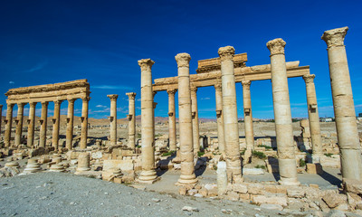 Roman columns of an ancient city in central Syria, Palmyra