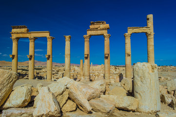 Landscape of the ruins of Palmyra, Syria