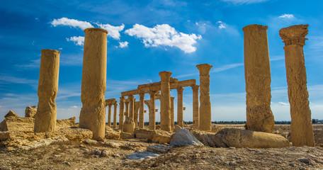 Palmyra landscape ruins.