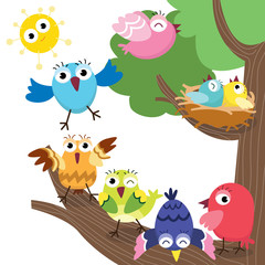 Cute Birds Family