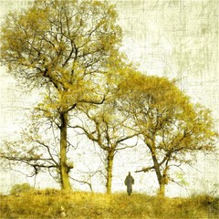 Bare trees with small human figure