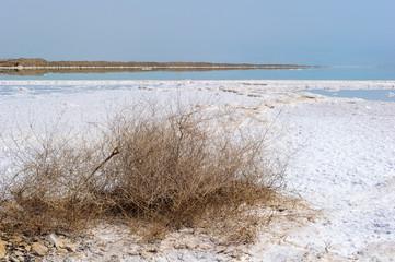 Dead Sea, borders Israel, Palestine amd Jordan