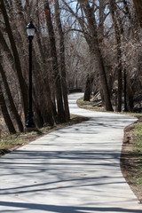 Shadow of bare trees across the empty Animas River Trail in Durango