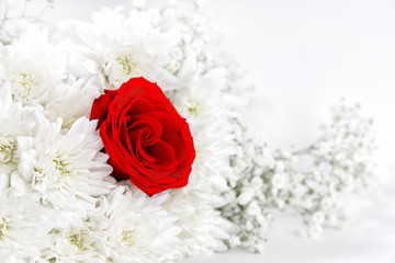 Red rose among white flowers