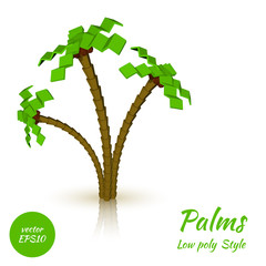 Palm trees on a white background in the low poly style. Vector i