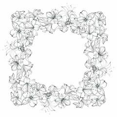 Hand-drawn floral frame