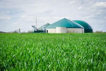 Biogasanlage mit Getreidefeld im Vordergrund