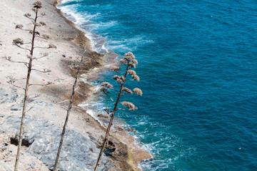 Mediterranean Sea in Turkey