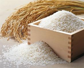 稲穂と枡に盛られた米