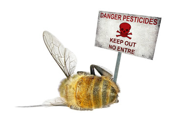 Dead honey bee and the danger warning poster