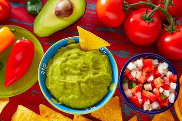 Mexican food nachos guacamole pico gallo cheese