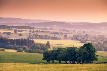 In de dag Zalm Bohemian landscape