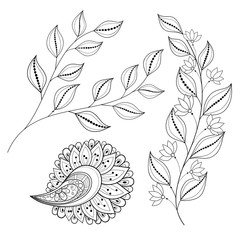 Vector Set of Monochrome Contour Flowers and Leaves