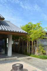 和菓子店の小さな竹藪