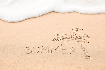Inscription of the word Summer and palm tree drawing on wet yell