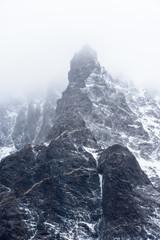 Nature of Antarctica