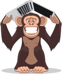 Monkey and computer