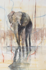 Original watercolour, elephant standing in a lake.