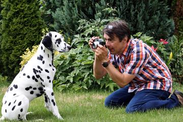 Dalmatiner wird fotografiert