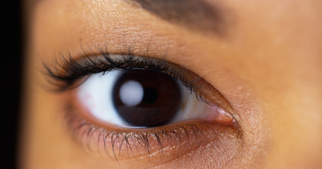 Brown Eyes Photos Royalty Free Images Graphics Vectors Videos