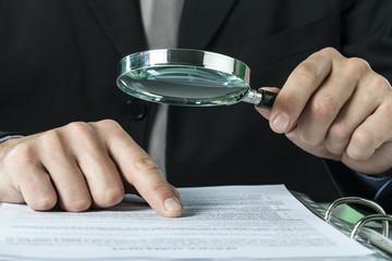Fraud, audit, auditor.
