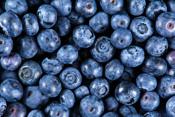 Clouse up Fresh Organic picked Blueberries. Rich with vitamins Background, texture