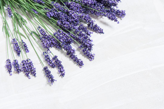Lavender flowers over white wooden background