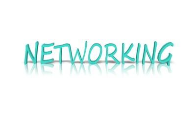 Networking 3d wort