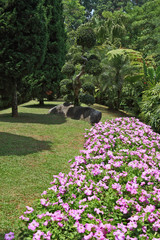 Gorgeous flower beds, lawns and tropical trees