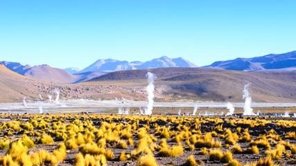 Geysers of the Atacama desert of Atacama, Chile