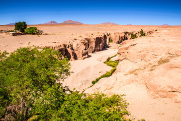Naature of the Atacama desert in Chile