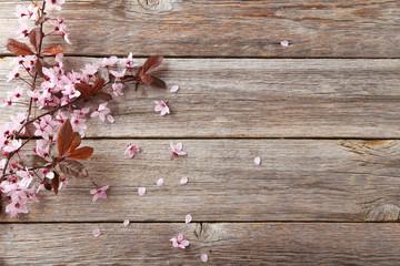 Spring flowering branch on grey wooden background